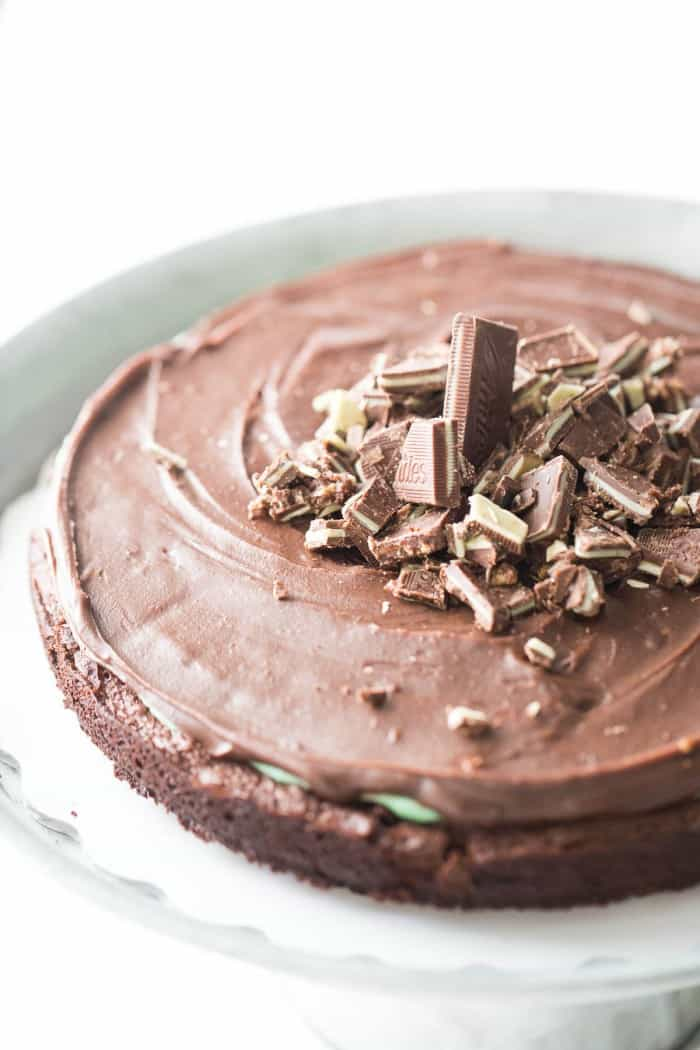 Flourless chocolate mint cake recipe is dense, rich and has the perfect amount of mint!