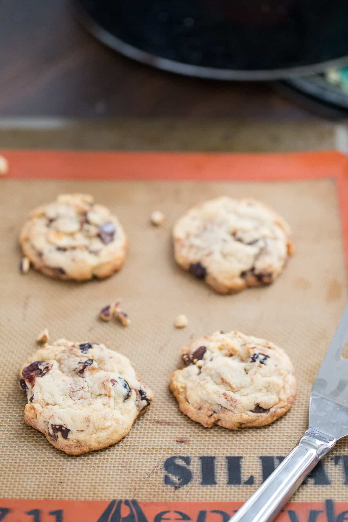 Cherry chip cookies have soft, drunken cherries blended with chocolate chunks and hazelnuts. This a true cookie experience!