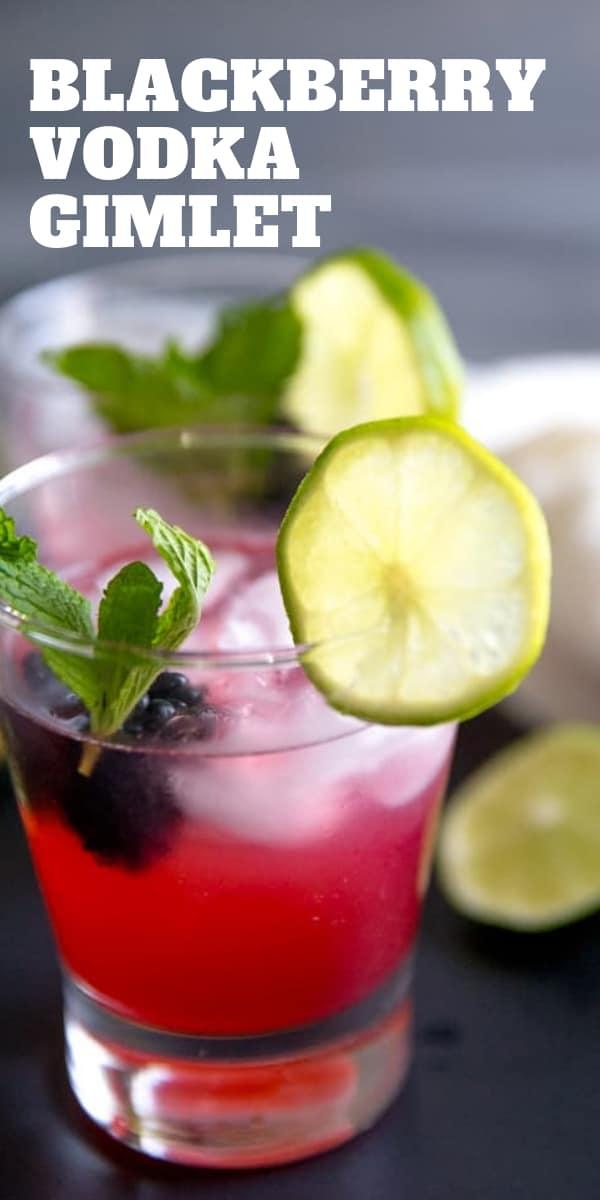 vodka gimlet with blackberries