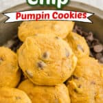 pumpkin chocolate chip cookies title photo
