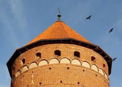 zamek reszel tower birds web