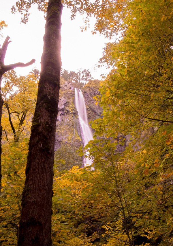 Travel Guide Along The Columbia River Gorge: Waterfall Edition