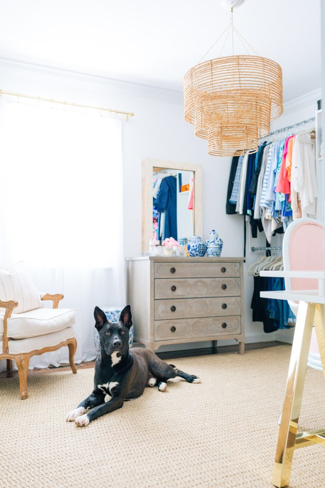 Julia Dzafic's Closet and Dog