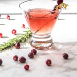 Spiced Cranberry Vodka Cocktail recipe.