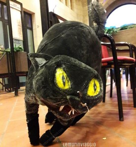 Gatto Halloween a San Marino