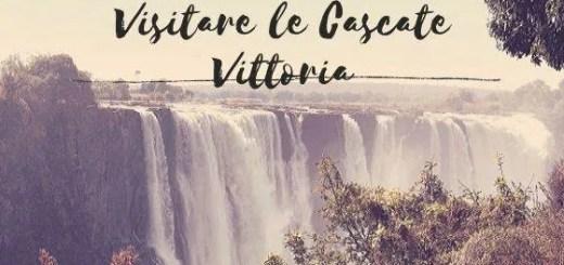 Giornata alle Cascate Vittoria in Africa