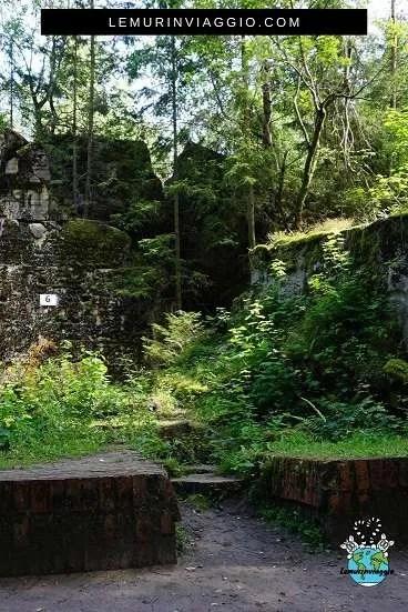 I bunker segreti di Hitler nascosti in mezzo alla foresta
