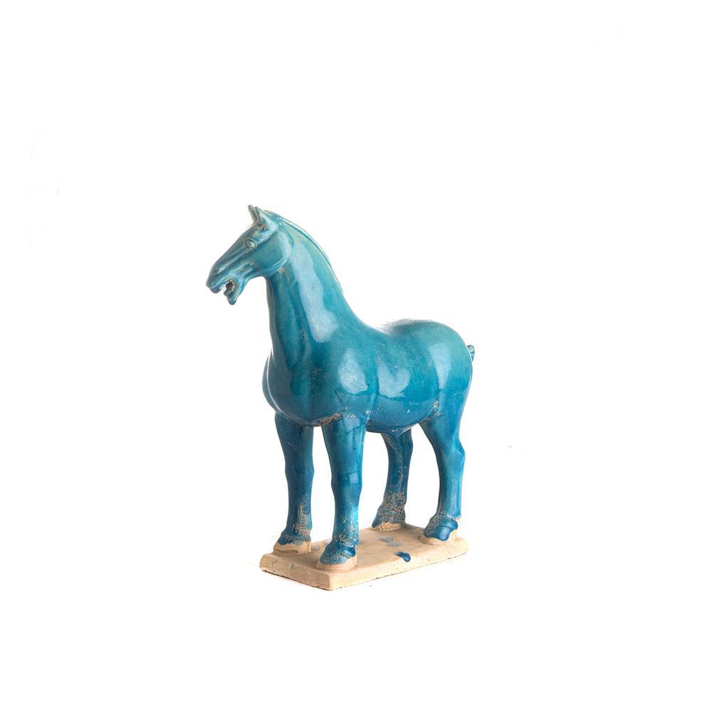 cavallo turchese S