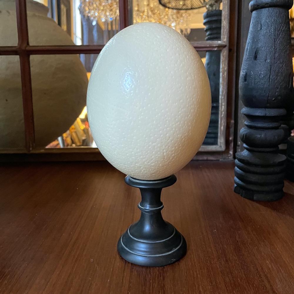 uovo struzzo basso
