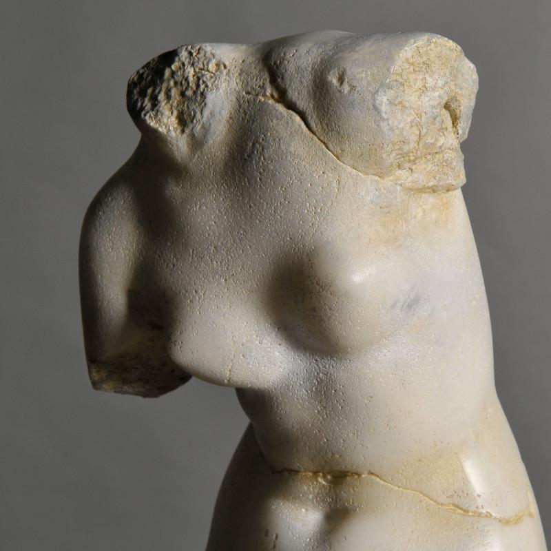 scultura venere