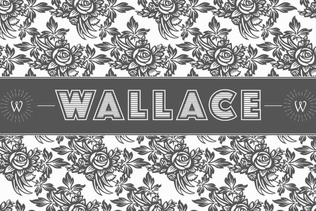 Wallace 14 octobre 2016