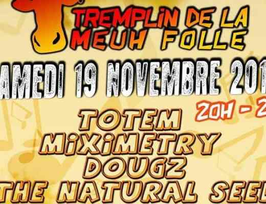 Tremplin festival Meuh Folle 2016