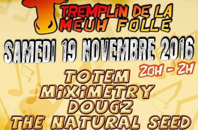 Tremplin festival Meuh Folle 2016