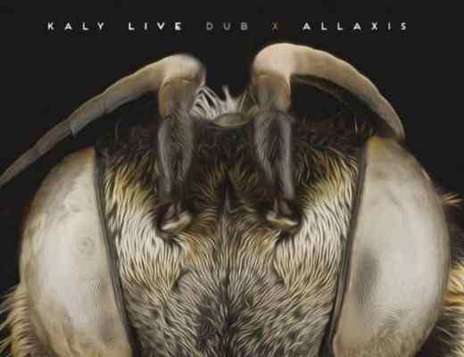 Allaxis Kaly Live Dub
