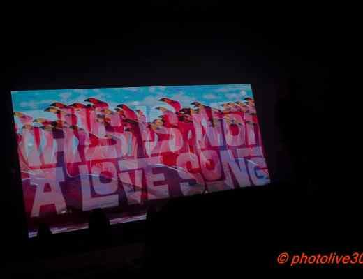 Ambiance TINALS 2017 Nîmes Photolive30