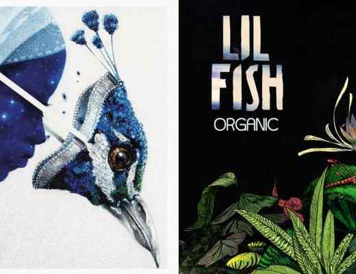 lil fish organic ep 2019 gravitas recordings