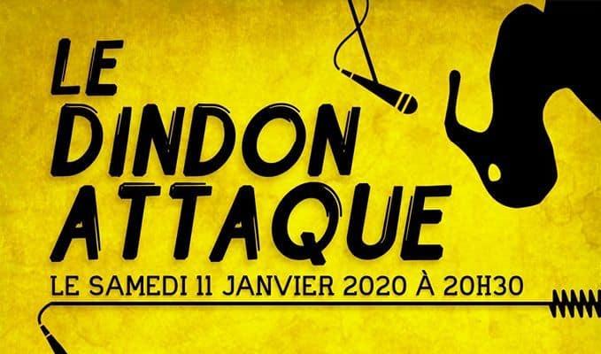 dindon attaque janvier 2020