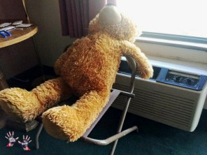The only time when I switched on a/c was for drying bear Bear