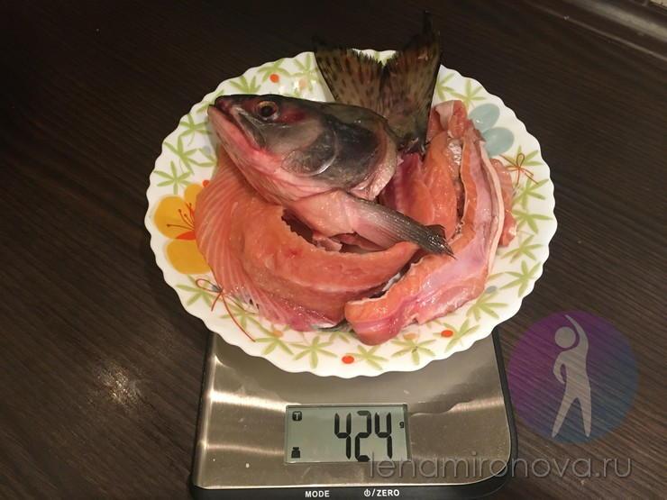 Soupe de poisson mis en place pour