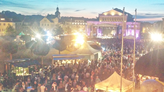 12 Local Offbeat Festivals In Franconia