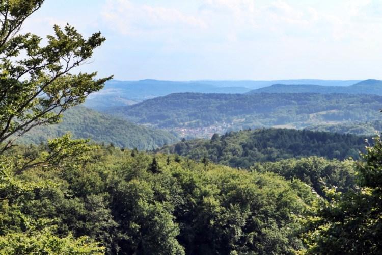Nature Around Hohenstein Castle