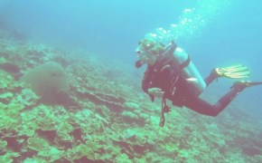 The Ultimate Guide To Budget Diving In 2020