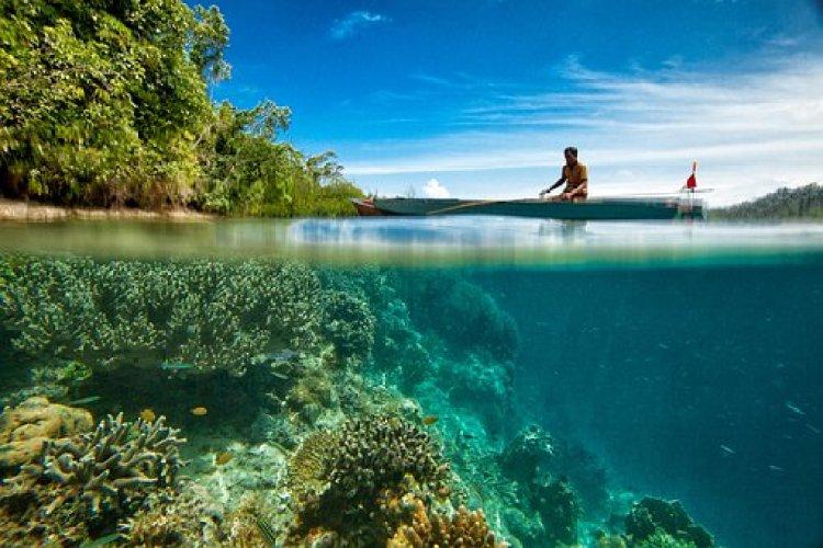 Dive Sites Philippines