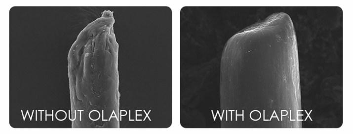 Without Olaplex and With Olaplex comparison