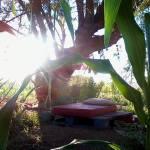 04 Mané, l´initiatrice de la communauté Aquí se celebra la Vida et guérisseuse au Kambô lenaventures
