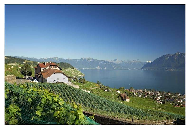 Domaine Croix Duplex in Lavaux Switzerland