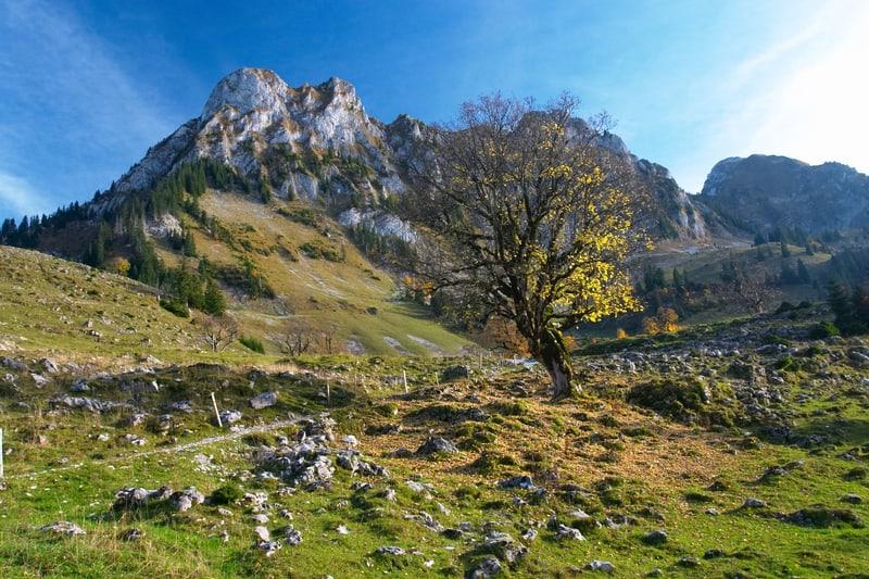 Rocky Jura mountains - © Exinocactus | Dreamstime.com