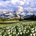Snow returns to Switzerland