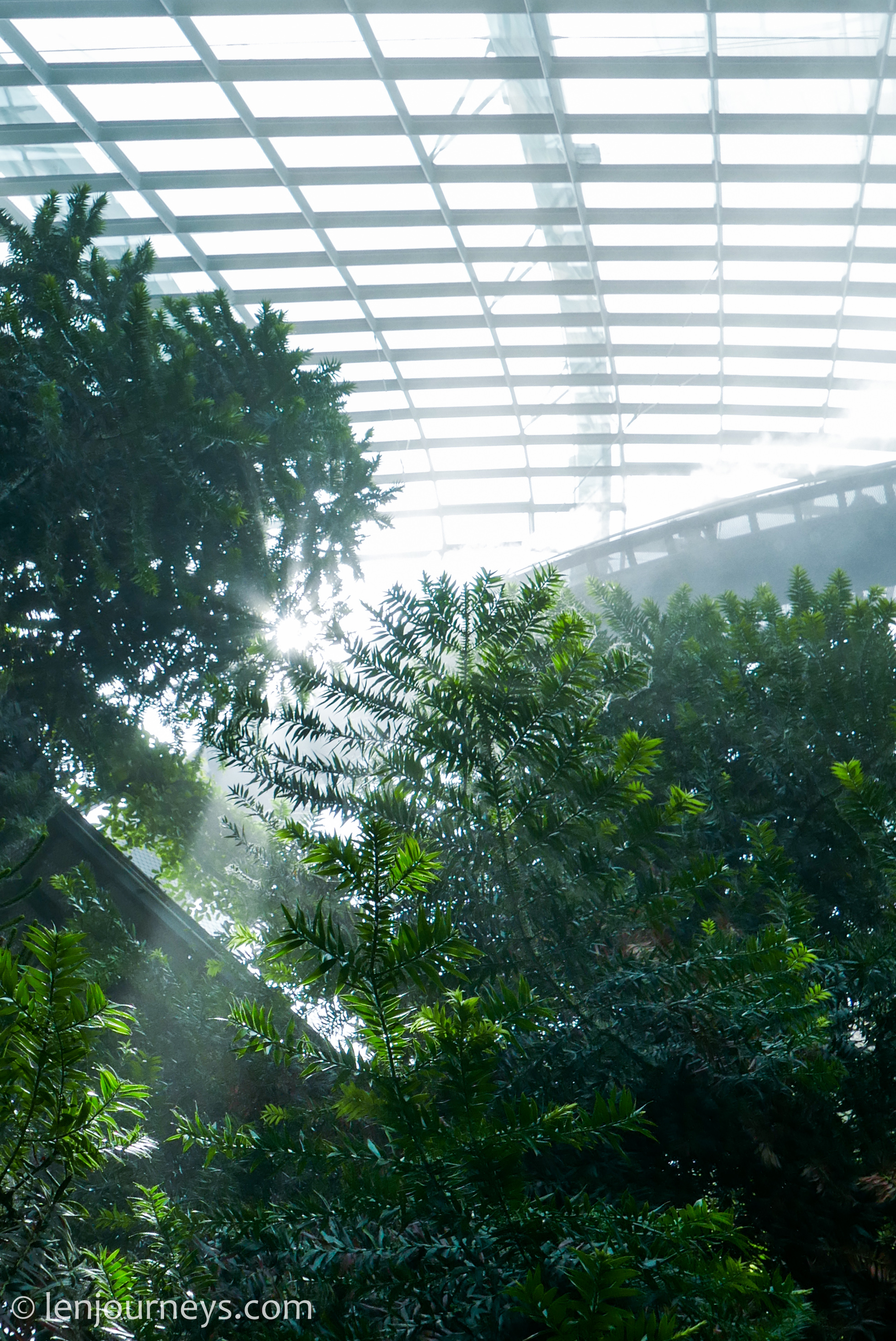 Cloud Forest at Gardens by the Bay, a mist-filled conservatory