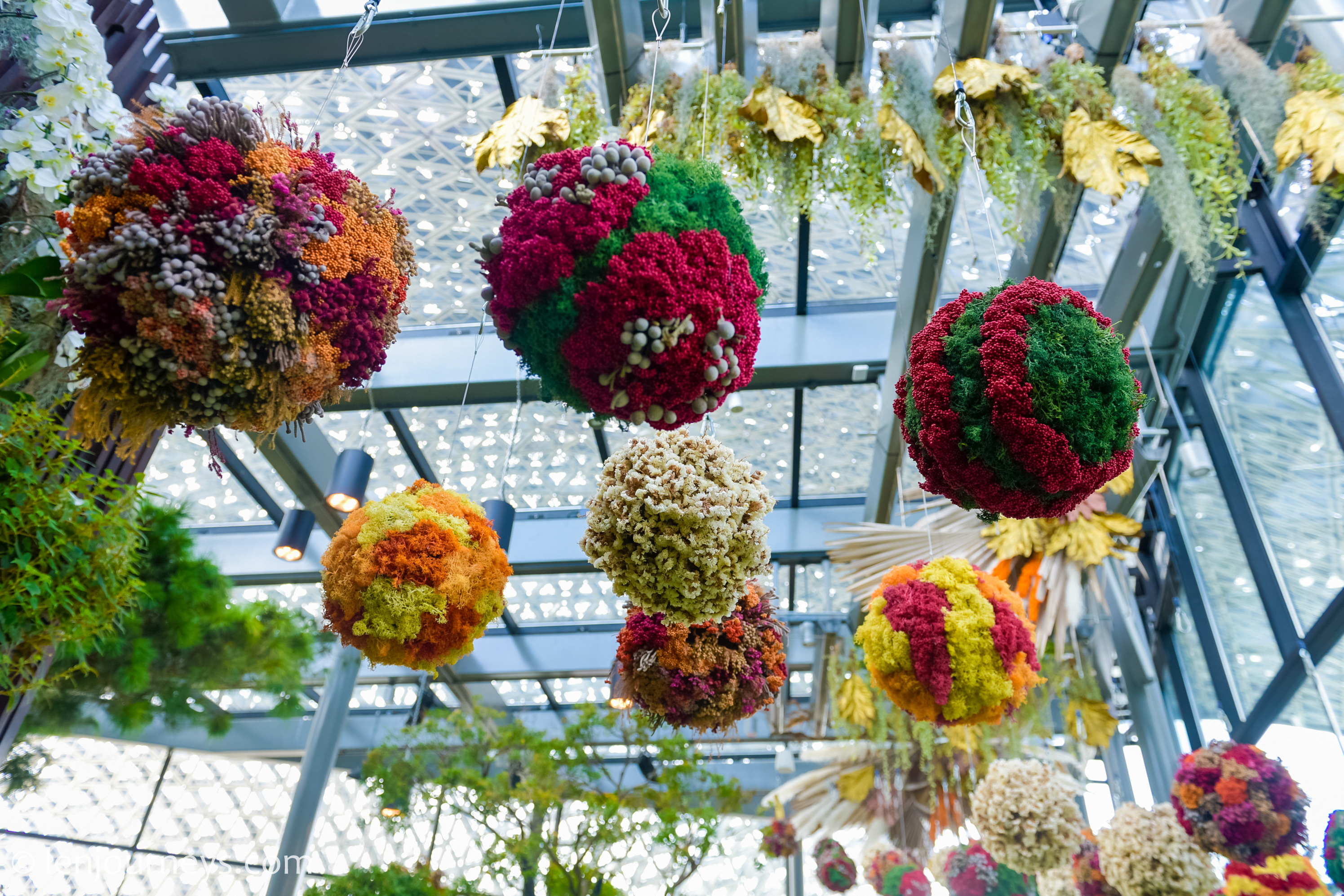 Hanging garden at Floral Fantasy