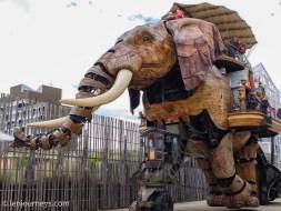Grand Elephant walking on the street
