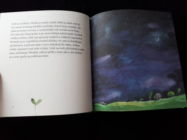 náhled do knihy Anna a Anička