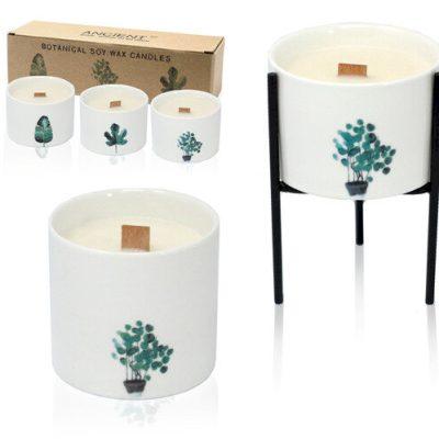 Střední botanická svíčka - Citron & Zimolez