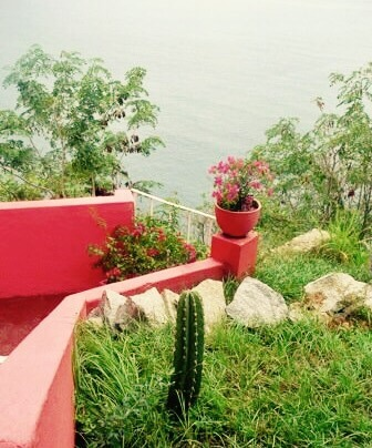 ružová terasa, kaktus a výhľad na Tichý oceán, Acapulco, Mexiko