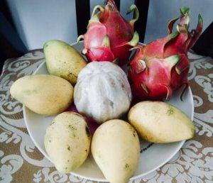 pitahaya, mango, pomelo