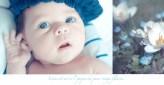 Photographe des nouveaux nés à Orléans
