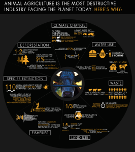 http://www.cowspiracy.com/infographic