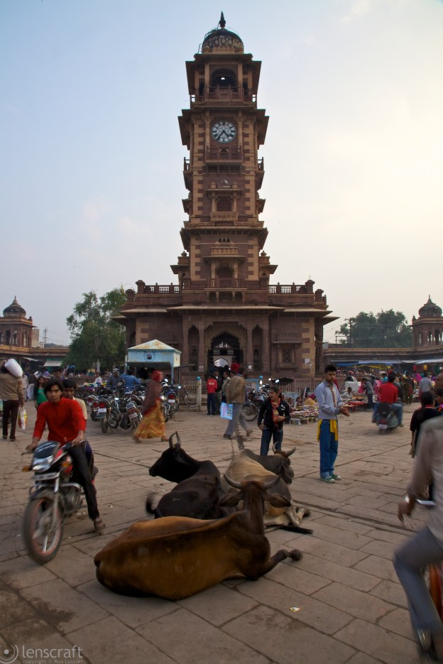clock tower & market / jodhpur, india