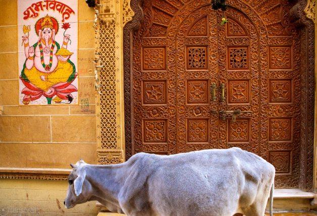 the ornate door / jaisalmer, india