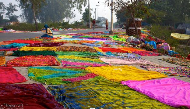 the dhobi wala / agra, india