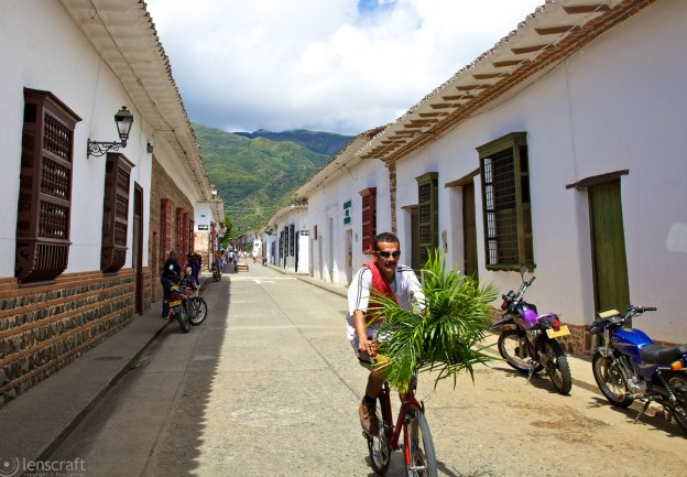 palm cyclist / santa fe de antioquia, colombia