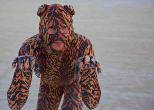 tiger tiger burning bright / black rock city, nevada