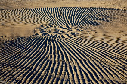 playa pattern / black rock city, nevada