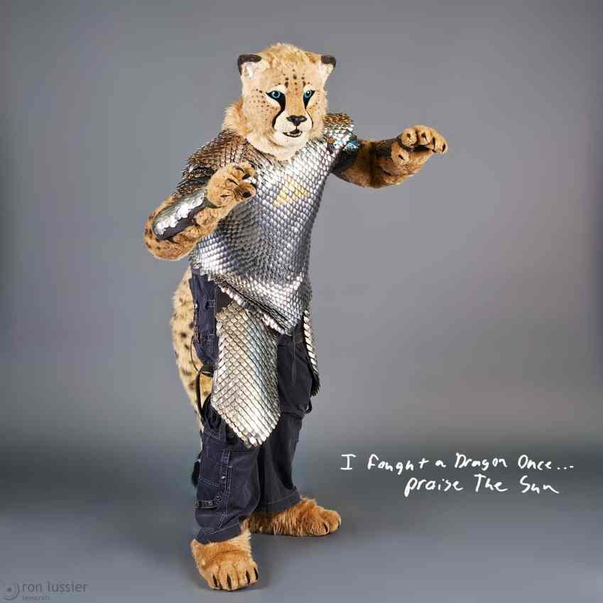 kiba cheetah / further confusion 2014
