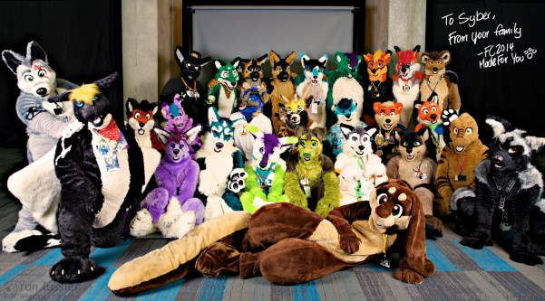 made fur you suits / further confusion 2014