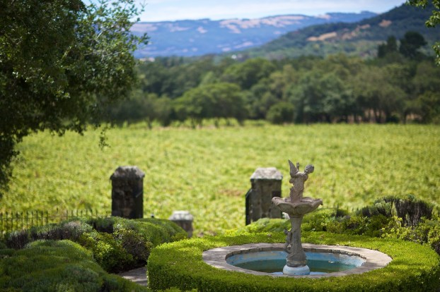 view from the palladian villa / sonoma, california